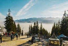 Vista delle montagne del polacco del te Immagini Stock