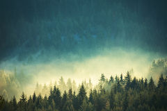 Vista delle montagne nebbiose della nebbia in autunno Immagini Stock