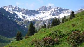 Vista delle montagne nelle alpi svizzere Immagini Stock
