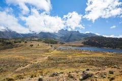 Vista delle montagne verdi e belle delle Ande fotografia stock