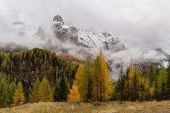 Vista delle nuvole e degli alberi della montagna nei colori di autunno, Tirolo del sud, alpi italiane Fotografie Stock