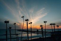 Vista delle palme, della spiaggia e del pilastro al tramonto, a San Clemente, contea di Orange, California fotografia stock libera da diritti