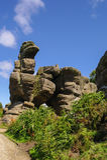 Vista delle rocce di Brimham, Yorkshire, Inghilterra Fotografia Stock