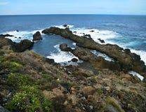 Vista delle rocce vulcaniche, delle piante e dell'oceano fotografia stock libera da diritti