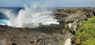 Vista delle scogliere e della soffiatura nell'isola di Espanola della La Fotografie Stock