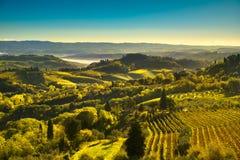 Vista delle vigne di chianti e della campagna da San Gimignano Fotografia Stock Libera da Diritti