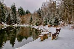 Vista dello stagno di inverno Immagini Stock Libere da Diritti