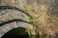 A vista detalhada de um muito velho, século XVIII construiu a ponte do pé em um esclarecimento da floresta Fotografia de Stock Royalty Free