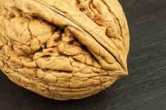 Vista dettagliata della struttura delle coperture di una noce Alimenti eccellenti per cervello umano Noci sane Immagine Stock Libera da Diritti
