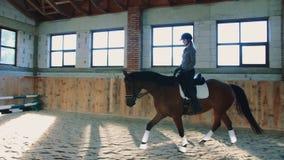 Vista di addestramento della donna con il cavallo mentre guidando velocemente sull'arena spaziosa sabbiosa sotto il tetto video d archivio