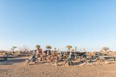 Vista di alba con le esposizioni divertenti al campo di resto del parco di Garas fotografia stock libera da diritti
