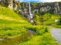 Vista di alta cascata ed il campo dei fiori gialli Immagine Stock Libera da Diritti