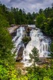Vista di alte cadute nella foresta dello stato di Du Pont, Nord Carolina Immagini Stock