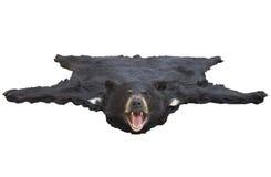 Vista di angolo basso di una coperta della pelle d'orso isolata su bianco Immagine Stock