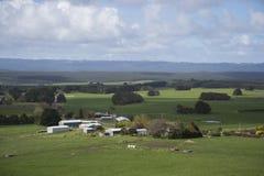 Vista di area di agricoltura nella campagna dell'Australia Immagine Stock