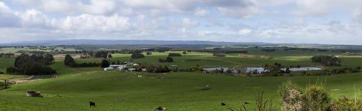 Vista di area di agricoltura nella campagna dell'Australia Fotografia Stock