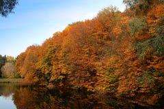 Vista di autunno Fotografia Stock Libera da Diritti