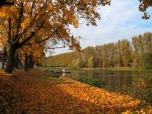Vista di autunno al fiume fotografia stock libera da diritti