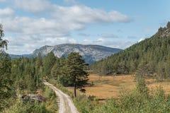 Vista di autunno alle montagne fotografia stock