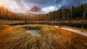 Vista di autunno con fogliame rosso delle alpi con il lago nel Tirolo Fotografia Stock