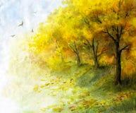 Vista di autunno con gli alberi gialli Fotografia Stock Libera da Diritti
