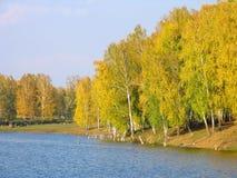 Vista di autunno del lago e della foresta Fotografie Stock