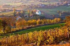 Vista di autunno della chiesa sulle colline rurali Immagini Stock Libere da Diritti