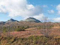 Vista di autunno della montagna immagine stock libera da diritti