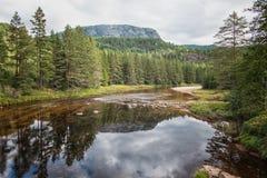 Vista di autunno nel lago immagini stock libere da diritti