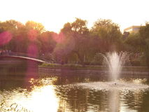 Vista di autunno in parco Immagine Stock