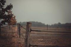Vista di autunno di un recinto del pascolo del salice vuoto Fotografia Stock