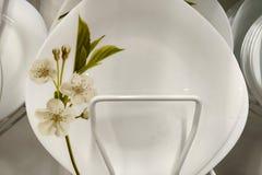 Vista di bella condizione bianca del piatto in una finestra del negozio immagine stock libera da diritti