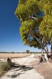 Vista di bella strada rurale australiana Australia Meridionale Immagine Stock Libera da Diritti