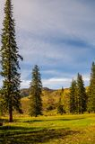 Vista di bellezza in montagne di Altai Catena montuosa in a nord-ovest delle montagne di Altai, nel territorio di Altai della Rus Immagine Stock