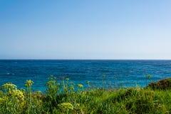 Vista di bello cielo con il mare con la priorità alta dell'erba Fotografia Stock Libera da Diritti