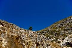 Vista di Canion Fotografie Stock