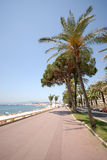 Vista di Cannes (riviera francese Fotografia Stock Libera da Diritti