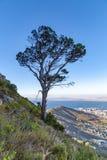 Vista di Cape Town immagini stock libere da diritti