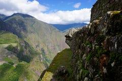 Vista di Cliffside Immagine Stock