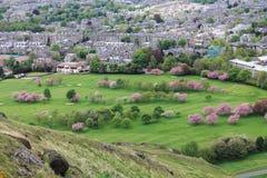 Vista di Edimburgo da Seat di Arthur in Scozia in primavera, Regno Unito Fotografia Stock Libera da Diritti