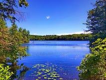Vista di estate del parco di stato di Burr Pond immagine stock