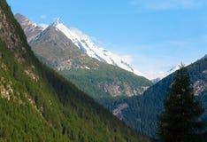 Vista di estate delle alpi Fotografia Stock Libera da Diritti