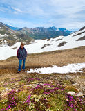 Vista di estate delle alpi Fotografie Stock