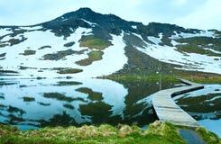 Vista di estate delle alpi Immagini Stock