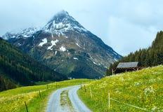Vista di estate delle alpi di Silvretta, Austria Fotografie Stock Libere da Diritti