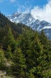 Vista di estate delle alpi di Silvretta, Austria Immagini Stock