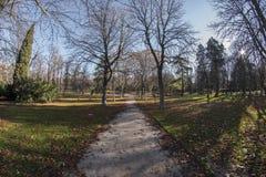 Vista di Fisheye 180 di uno spazio nel parco di Retiro nella città di Madrid Immagine Stock Libera da Diritti