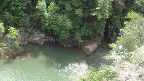 Vista di Georgia, di Tallulah Falls, di A di grande stagno al fondo dell'L-UCE d-o cadute video d archivio