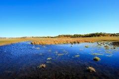 Vista di giorno della scena di autunno al Inner Mongolia immagine stock
