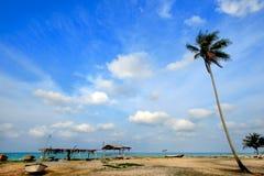 Vista di giorno della spiaggia della sabbia con l'albero di noce di cocco fotografie stock libere da diritti